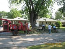 July 2012 Storm Tree Removal